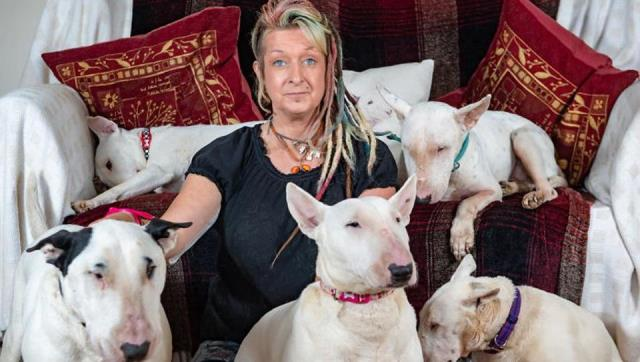 'Me or the dogs': Woman chooses dogs over husband, asks him to leave