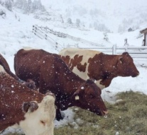 Snow hits parts of Italy and Austria