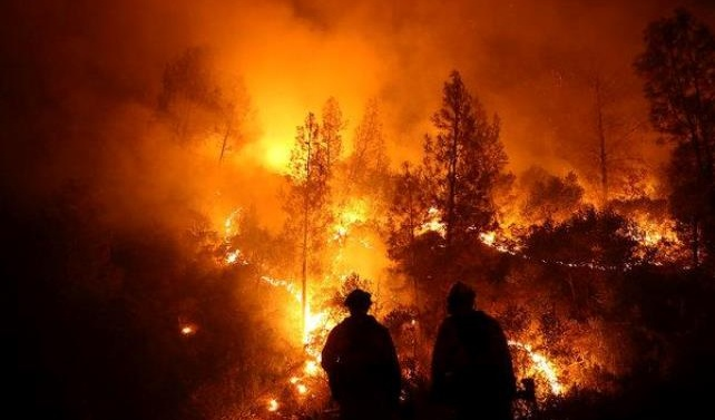 26 firefighters dead in China forest blaze